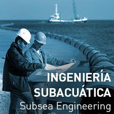 Ingeniería subacuática